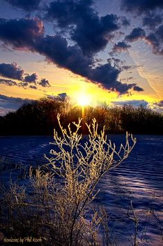 Sheer joy and inspiration in this photo. I never tire of the goodness of nature! [pic by Phil Koch]