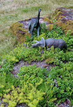 Not a Fairy Garden - a Dinosaur Garden!   FUN AT HOME WITH KIDS