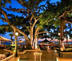 America's best outdoor bars: The Beach Bar Hono, HI
