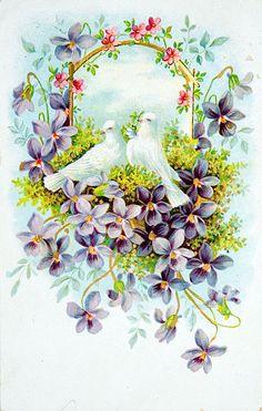 postcards, inspiration, vintage weddings, vintag card, brilliant bird