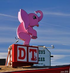 Pink Elephant via Flickr