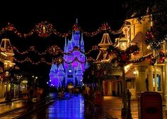 Castle Dream Lights at Disney's Magic Kingdom.  Love the reflection in the sidewalk & the outline of the Main Street USA buildings.