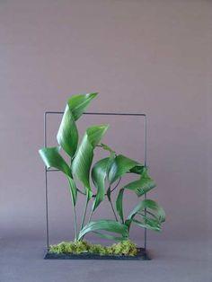 leaf manipulation