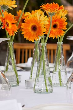 Sweet and simple vases with Gerbera Daisies add color and charm. Gerbera Daisies are available year-round at GrowersBox.com.