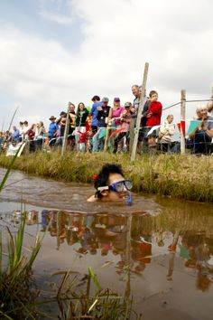 World Bog Snorkeling Championships: If you think snorkeling is a bore, jump in and see what you think of a murky bog snorkeling race in Wales.