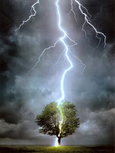 sky, thunderstorm, jane eyre, weather, beauty, earth, amazing nature, mother nature, tree of life