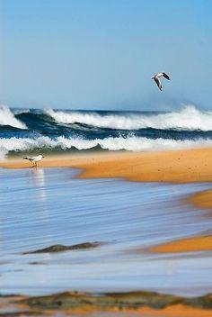 I can feel the fresh ocean air.