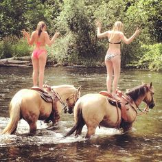 Summer fun with horses in a stream