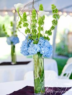 Blue and Green Wedding Inspirations |