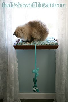 Tutorial for the Easiest DIY Cat Perch / Cat Window Seat Ever at DIYShowOff!