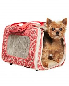 """Greg Kleva, trainer and host of """"It's a Dog's Life,"""" on Martha Stewart Living Radio, recommends familiarizing your pet with their carrier. Leave it out and open for a few weeks before you depart. #marthastewartpets #petsmart"""