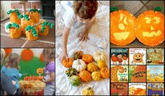 Pumpkins and more pumpkins!