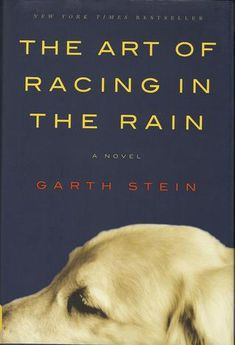 The Art of Racing in the Rain - GREAT READ-i love u enzo <3