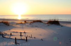 Alabama beach, Gulf Shores/Ft. Morgan