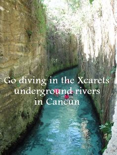 go diving in the Xcarets underground rivers in Cancun