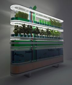 """""""Biosphere home farming concept generates food and cooking gas, while filtering water. The concept supplements a families nutritional needs by generating several hundred calories a day in the form of fish, root vegetables, grasses, plants and algae. Unlike conventional hydroponic nurseries this system incorporates a methane digester than produces heat and gas to power lights, similarly algae produces hydrogen and the root plants produces oxygen, which is fed back to fish..."""
