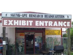 Skunk Ape Research HQ, Florida Everglades