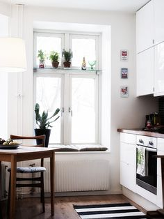 plant, 287, kitchen nook, kitchen interior, kitchen windows