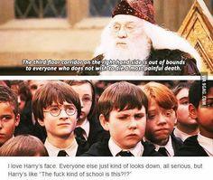 hahaha oh, Harry...