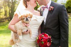 adorable portrait | Courtney Dox #wedding