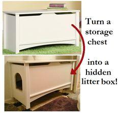 Hidden Litter Box!