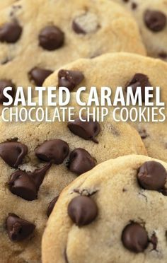 Want to try salty and sweet for dessert! Rachael Ray and 3 Days To Kill star Hailee Steinfeld teamed up on these Chocolate Chip Sea Salt Caramel Cookies. http://www.recapo.com/rachael-ray-show/rachael-ray-recipes/rachael-ray-hailees-chocolate-chip-sea-salt-caramel-cookies-recipe/