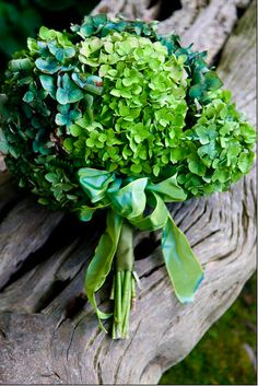 Green and Blue Hydrangeas
