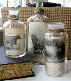 """Pictures """"framed"""" inside jars from Mitzi's Miscellany blog"""