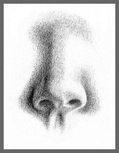 How to draw a photorealistic nose 28 images 21 hyper realistic how to draw a photorealistic nose noses on how to draw pencil drawing tutorials ccuart Image collections