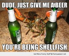 Don't Be Shellfish | Funny As Duck | Funny Pictures