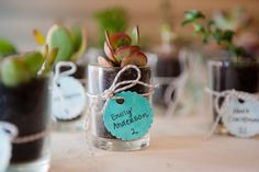 DIY unique escort card & wedding favor idea ~ mini succulents with hand-written names. From Chris & Vida's beautifully simplistic, teal & sea foam green, springtime wedding in Northern Virginia. Images by Kelly Ewell Photography.