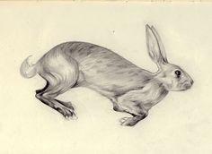 Chloe Giordano sketch