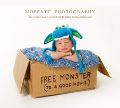 FREE Monster (to a good home) Cruize,10 days new