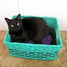 Upcycle your furbaby a cozy bed! Using a basket and some of your pet's favorite fabric you can whip one in no time!