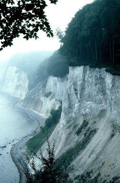 White Cliffs, Green Forest