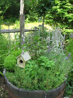 herbing