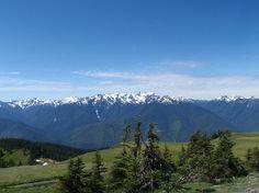 Hurricane Ridge, Olympic Mountains
