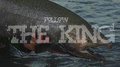 Follow The King (Trailer). King salmon fly fishing in British Columbia
