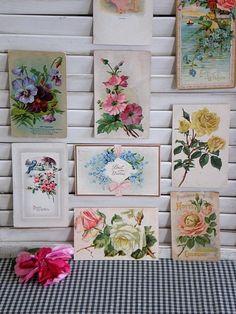 vintage floral postcards as wall art