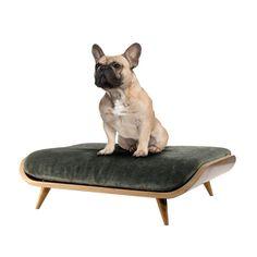 Mid-century modern dog bed