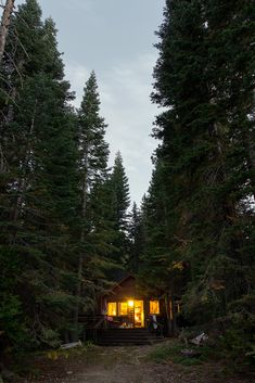 townsendphoto:    Cabin in the Woods