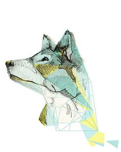 by sarah.lamonde graphisme, illustration, loup, couleur, dessin
