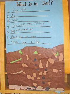 What is in soil, plus tons of rock unit ideas