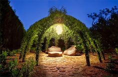 Living Willow Structures by Bonnie Gale