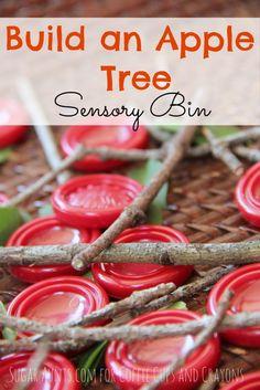 Build an Apple Tree Sensory Bin - Coffee Cups and Crayons