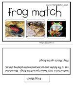 Frog Match File Folder Game