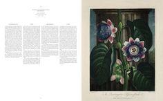 Robert John Thornton. The Temple of Flora. Libros TASCHEN