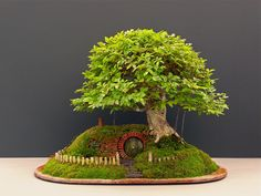 Lord of the Rings / Bag End Bonsai trayscape, unbelievably realistic!  See www.bonsaiempire.com    #bonsai #landscape #tree