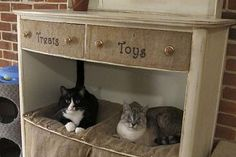 DIY kitty condo from old dresser.