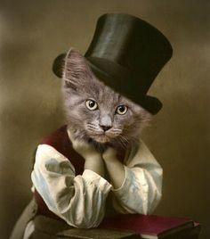 Vintage Cat 5x7 Print - Anthropomorphic - Animal Print - Collage from etsy.com.